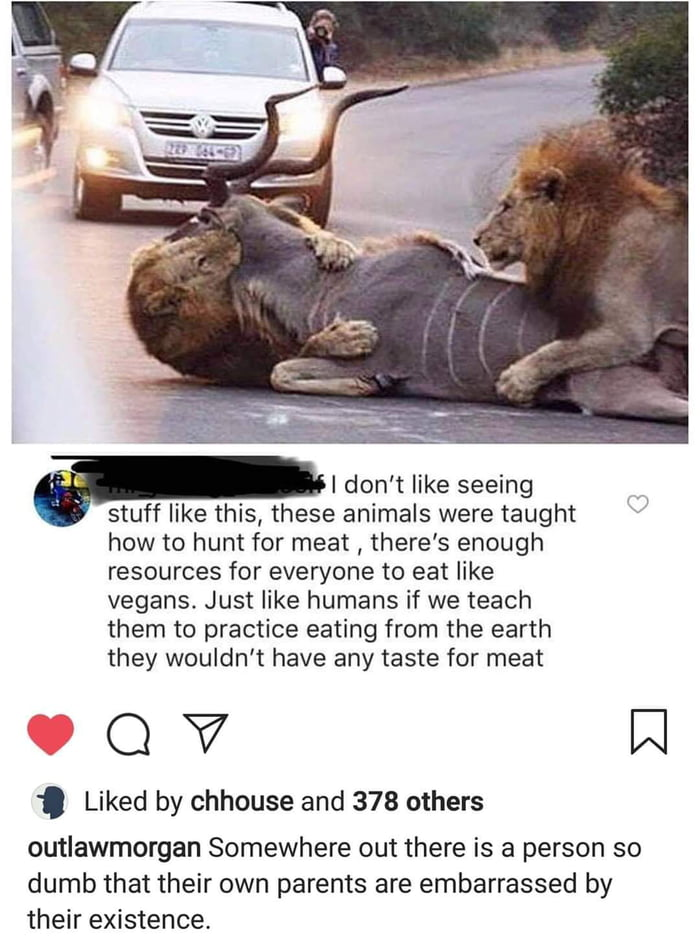 Teach lions to eat leaves.
