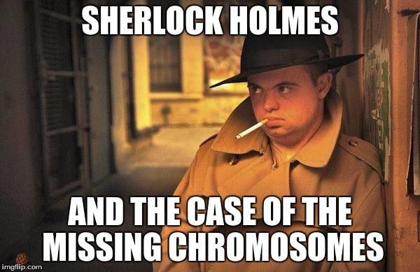 Where my mf chromosomes