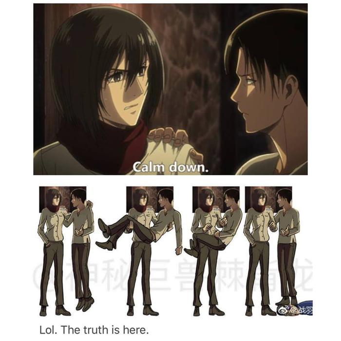 Just accept that Levi got taller!