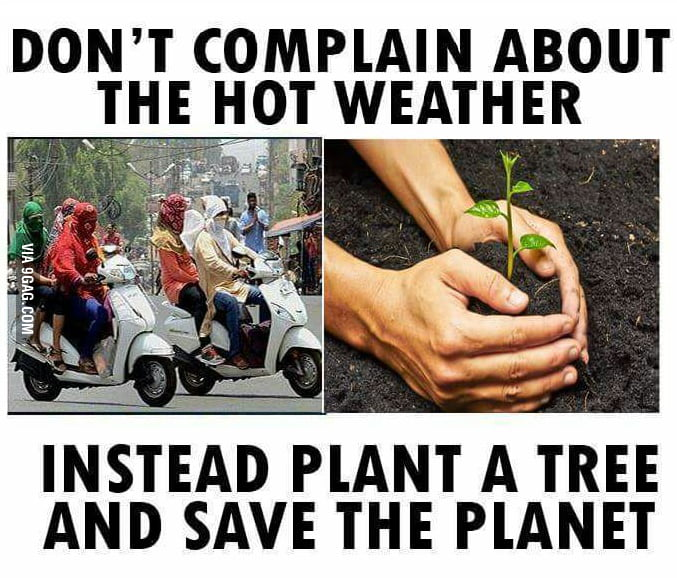 Stop complaining and start planting