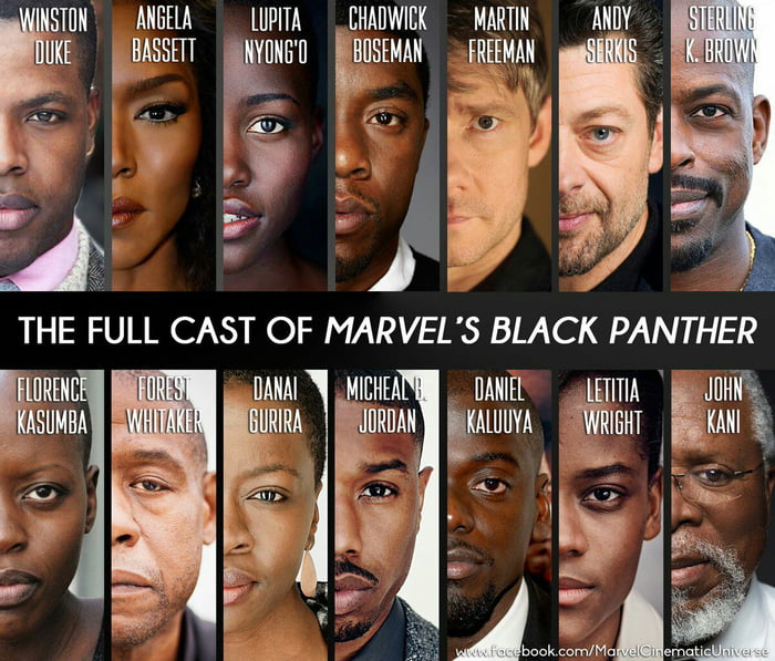 The Black Panter trailer just announced, here's the full cast