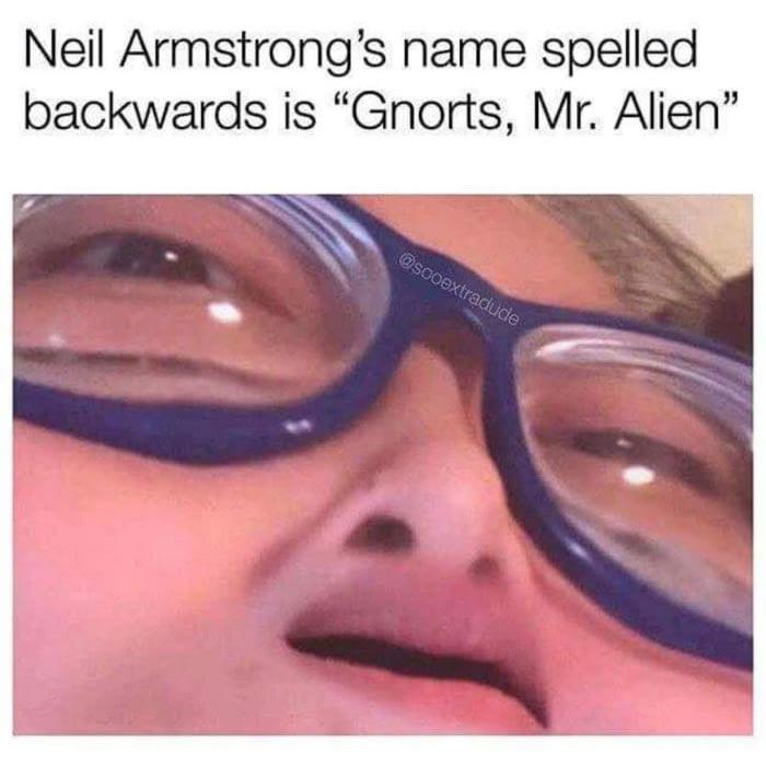 Gnorts