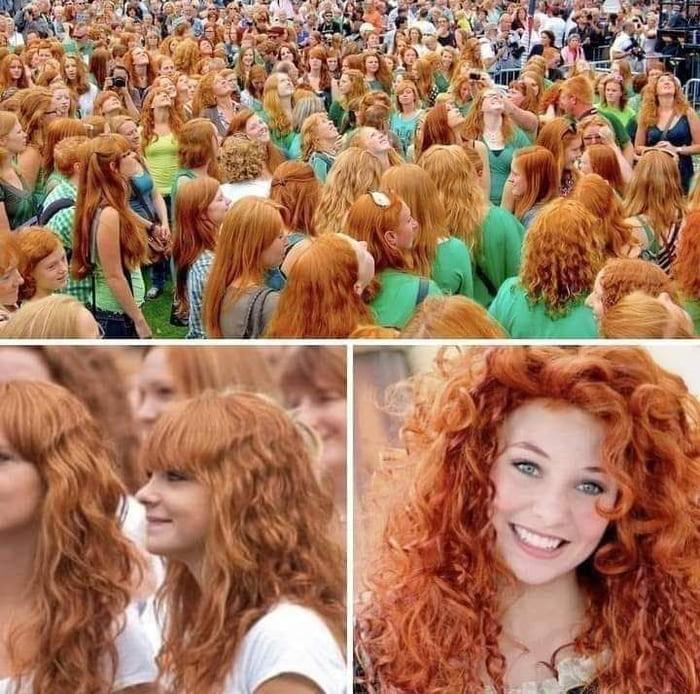 Genetics? Red hairs Festival in Dublin, Ireland.