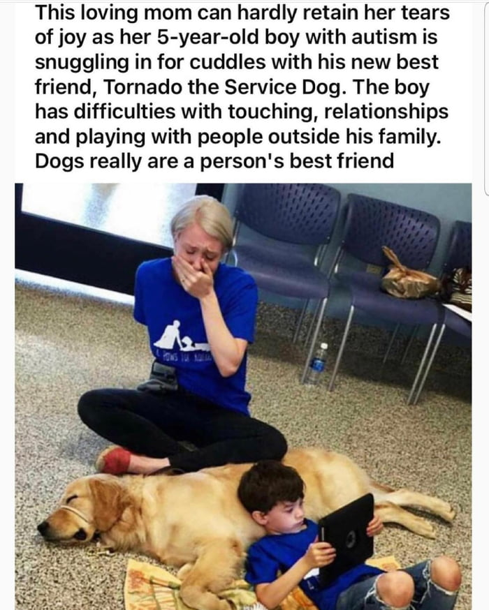 Dogs really are wonderful