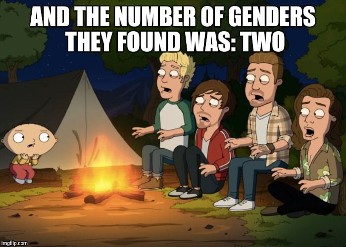 How I imagine transgender scout camp