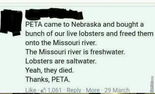 Damn you peeta.