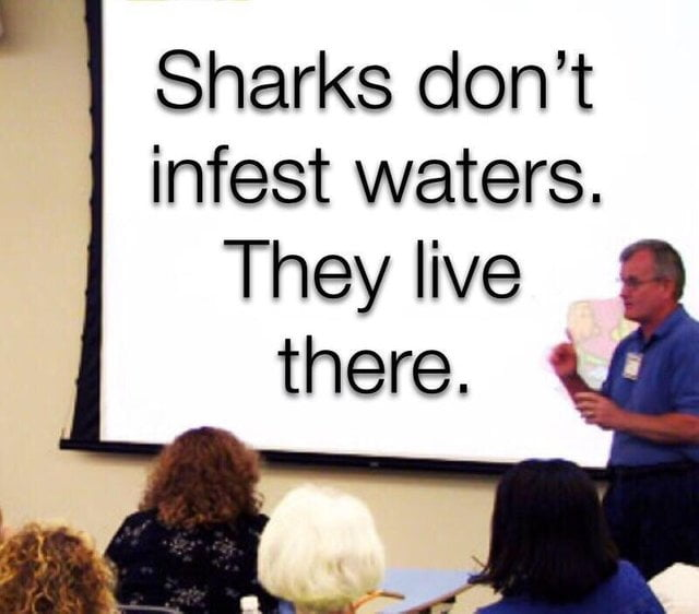 Sharks have feelings too
