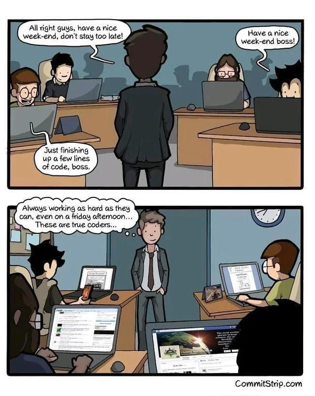 Software developers are hard workers