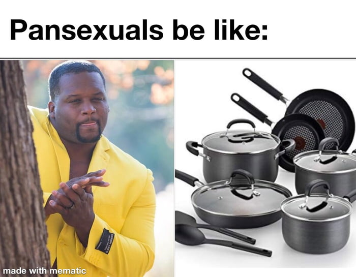 Pansexuals be like